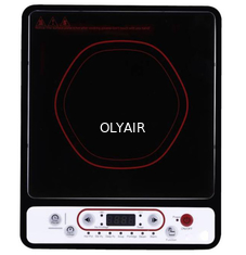 203A Induction Cooker