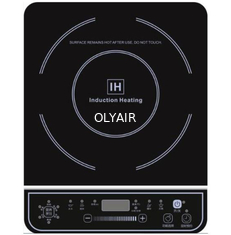 D22 Induction Cooker
